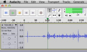 The -12 to 0 ideal audio range I achieved when monitoring the levels was caused by peaks in the subject's volume, such as when she laughed.