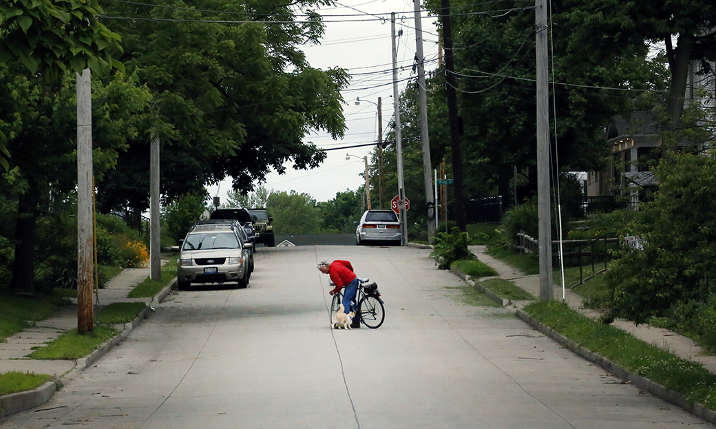 A man biking south on Ripley Street stops to pet a cat on June 1, 2015. Metadata: f/11; 1/800; ISO 8000; 140mm focal length
