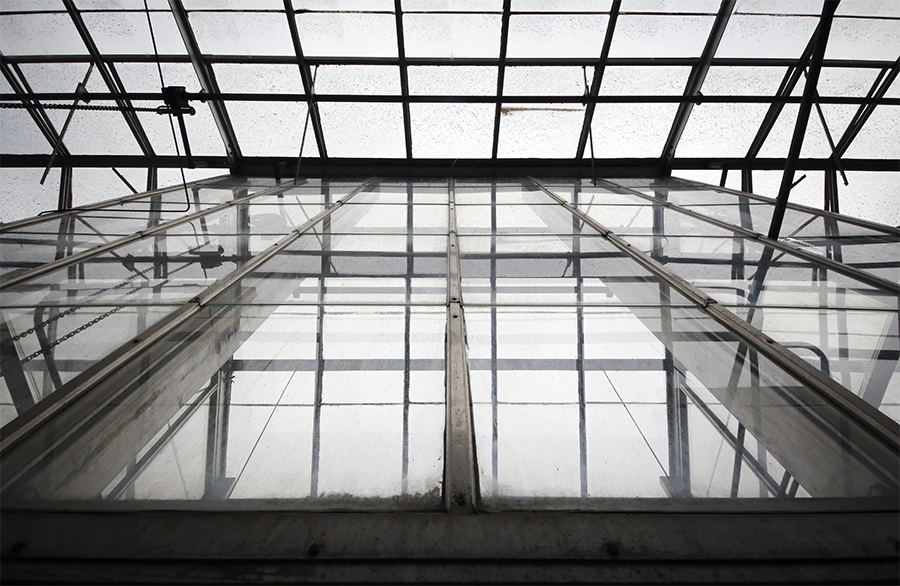 The metal and glass limbs of Tucker Greenhouse soar toward a gray Missouri sky on Dec. 14, 2015.