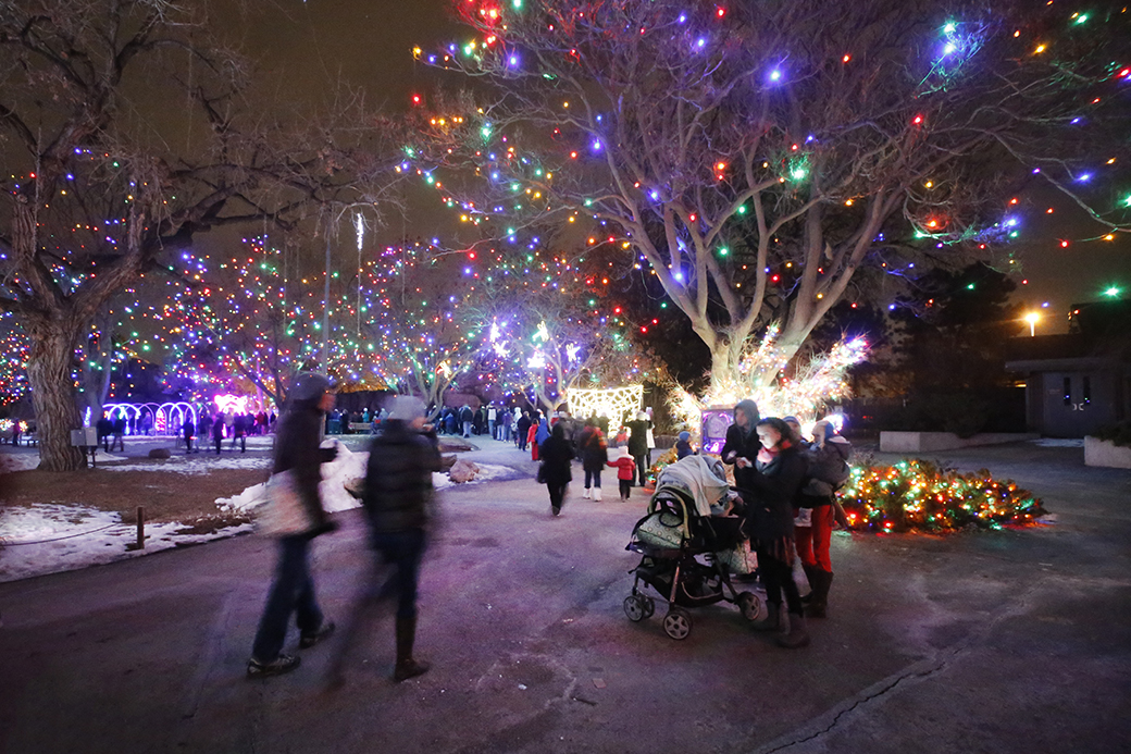 A girl checks her cell phone while patrons mill through the Denver Zoo during its 25th annual holiday lights event on Jan. 2, 2016. The attraction featured more than 150 animated sculptures across 38 acres.